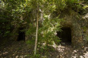 Cuevas de la Tarasca