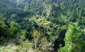 La Fajana
